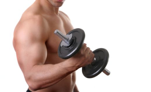 Biceps Exercise Without Weights Weight Lifting Exercises Aim